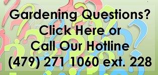 HotLineGraphic